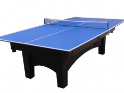 Ping pong table top for pool table