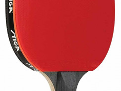 Best Ping Pong Paddle under $100 – Best Ping Pong Tables